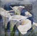 Paintings: Miscellaneous, Calla lilies, oil on canvas and wooden frame, 112x112 cm